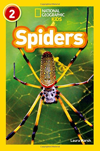9780008266653: Spiders (National Geographic Readers)