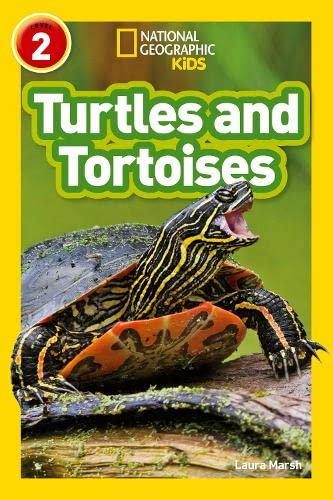 9780008266660: NAT GEO READER - TURTLES AND T