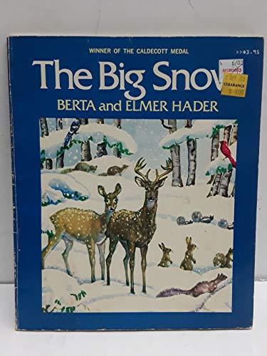 9780020433002: The Big Snow