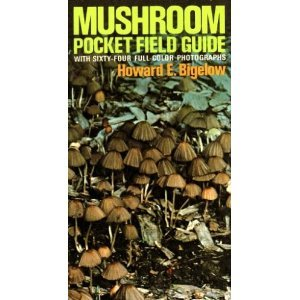 9780020622000: Mushroom Pocket Field Guide