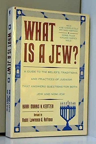 9780020863304: What Is a Jew?