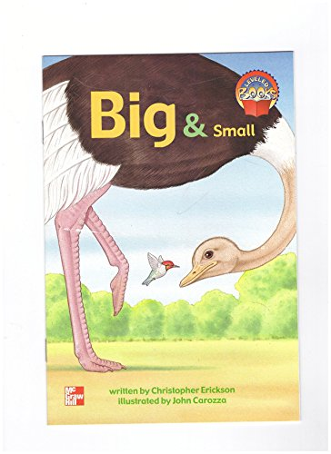 9780021851867: Big & Small (McGraw-Hill Reading, Leveled Books)