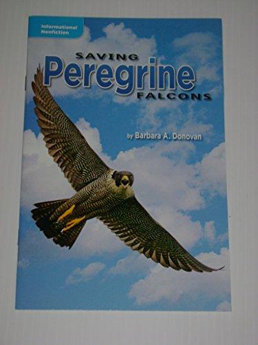 Saving Peregrine Falcons: Barbara Donovan