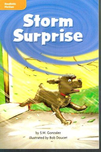 9780021975860: Storm Surprise - Leveled Reader Library GR O Benchmark 34 Lexile 520