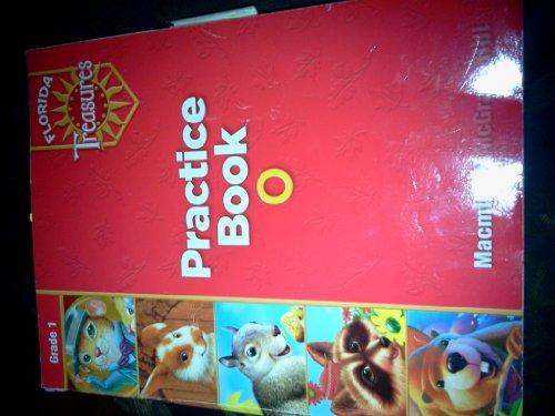 9780022007683: Practice Book O Grade 1 (Florida Treasures)