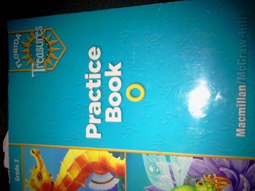 9780022007690: Practice Book O Grade 2 (Florida Treasures)