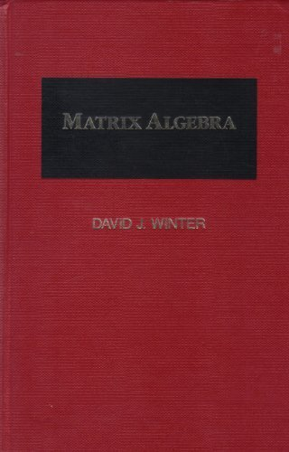 9780024288318: Matrix Algebra