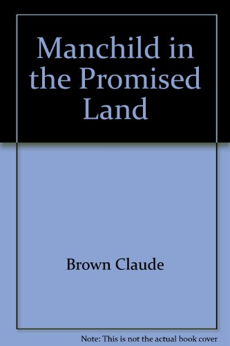 9780025173200: Manchild in the Promised Land