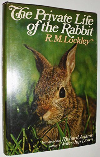 The Private Life of the Rabbit: An: R. M. Lockley