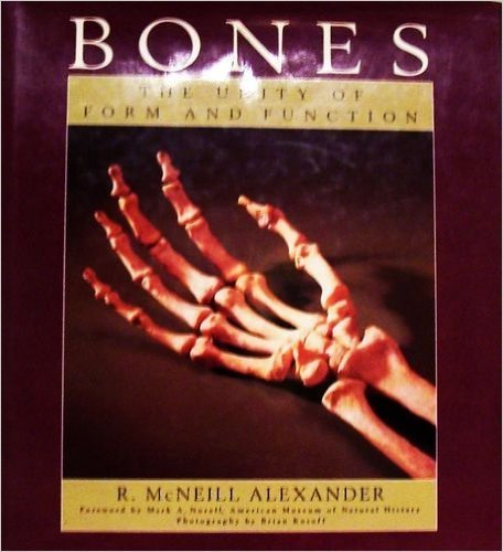 9780025836754: Bones: The Unity of Form and Function