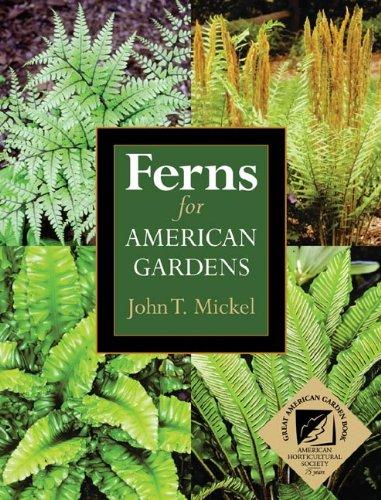 9780025844919: Ferns for American Gardens