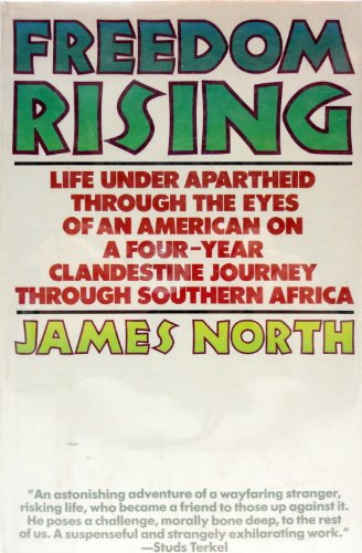 9780025899407: Freedom Rising