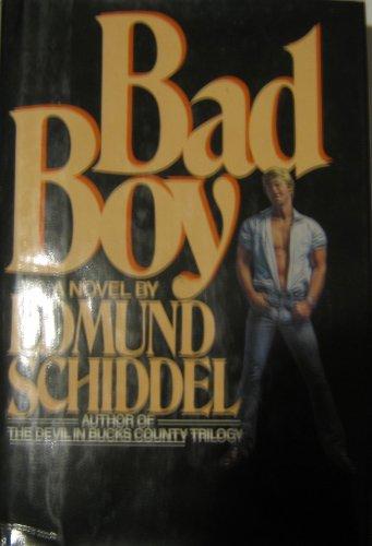 9780026070904: Bad Boy