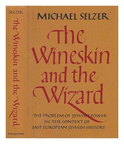 9780026096409: Wineskin and the Wizard