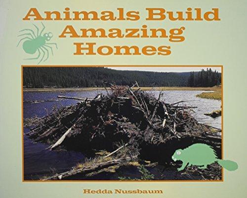 9780026877619: Animals build amazing homes