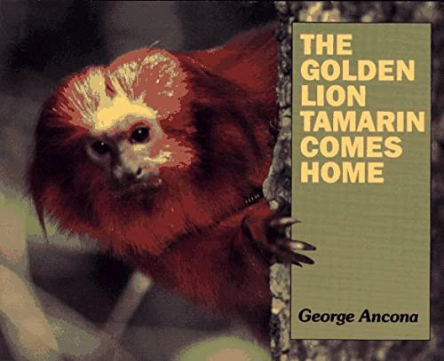 9780027009057: The Golden Lion Tamarin Comes Home