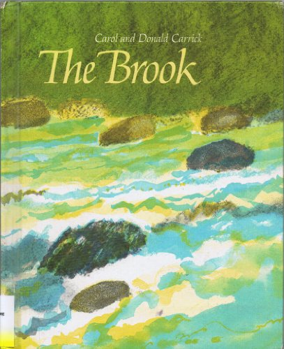 9780027173307: The Brook