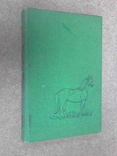 9780027327502: Summer Pony