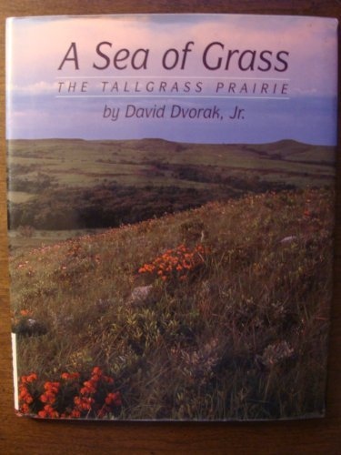 A Sea of Grass : The Tallgrass Prairie: Dvorak, David, Jr.