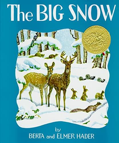 9780027379105: The Big Snow