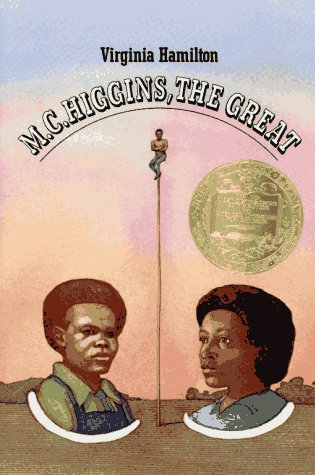 9780027424805: M. C. Higgins, the Great