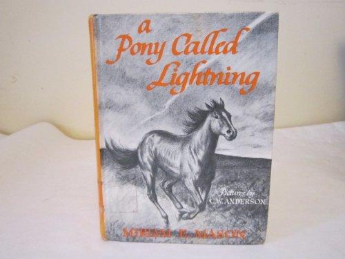 9780027648201: A Pony Called Lightning