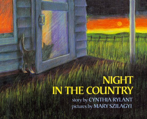 9780027772104: Night in the Country