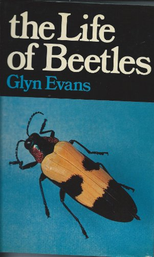 9780028443300: The Life of Beetles