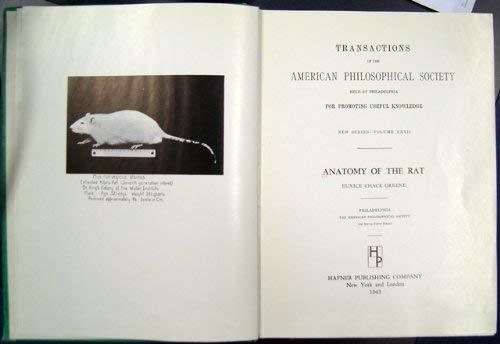 9780028454405: Anatomy of the Rat