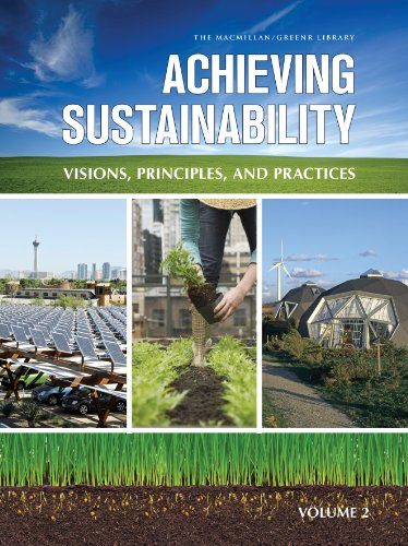 9780028662015: Achieving Sustainability: Visions, Principles & Practices, 2 Volume Set