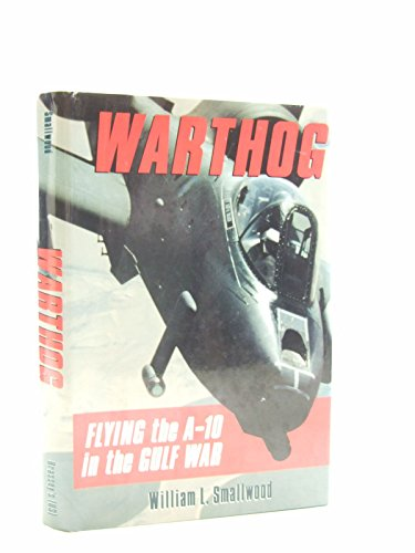 9780028810218: Flying the A-10 in the Gulf War