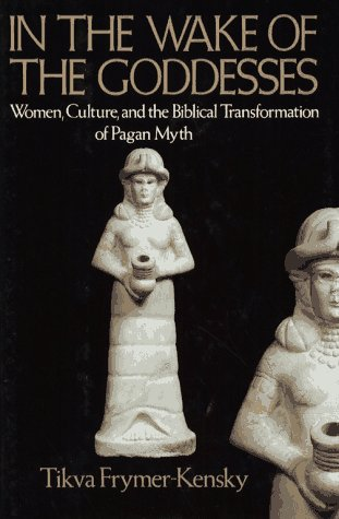 9780029108000: In The Wake of the Goddesses: Women, Culture, and the Biblical Transformation of Pagan Myth