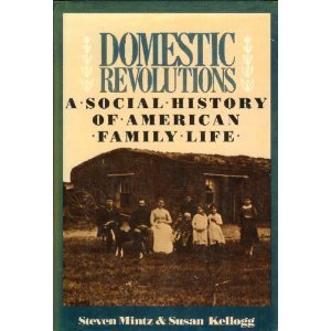 9780029212905: Domestic revolutions: A social history of American family life