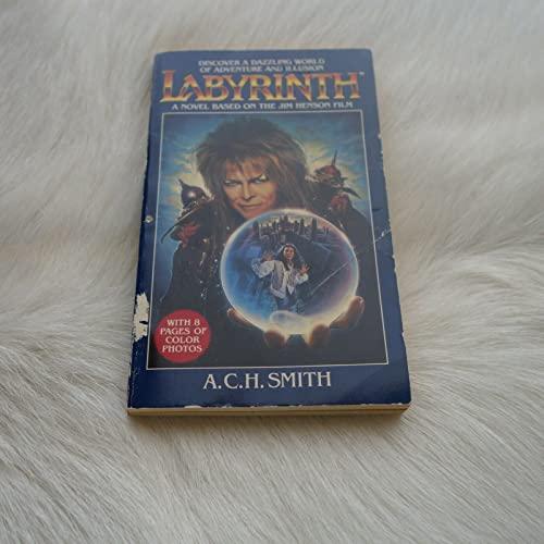 9780030073229: Labyrinth