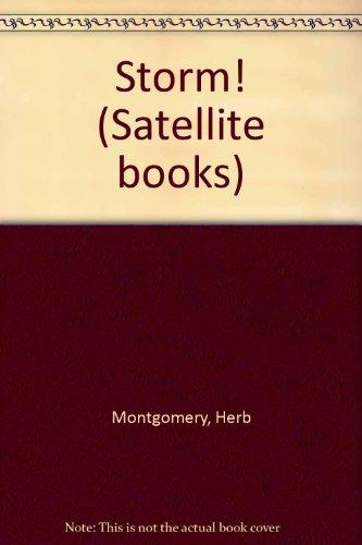 9780030499418: Storm! (Satellite books)