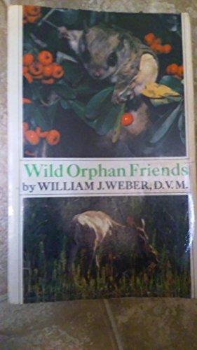 9780030568220: Wild Orphan Friends (Holt Owlet)