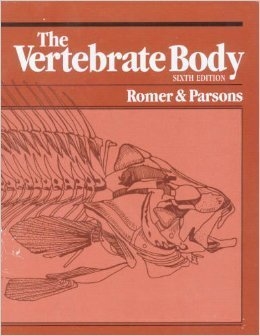 9780030584466: The Vertebrate Body (The Saunders series in organismic biology)