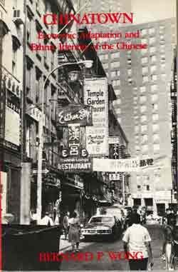 9780030589065: Chinatown, Economic Adaptation and Ethnic Identity of the Chinese (Case Studies in Cultural Anthropology)