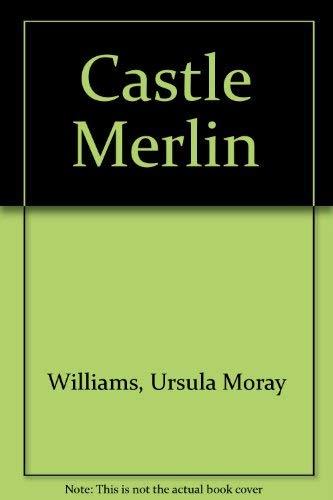 9780048230980: Castle Merlin
