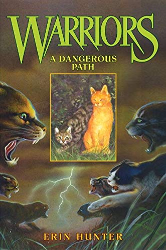 9780060000066: A Dangerous Path (Warriors (Erin Hunter))