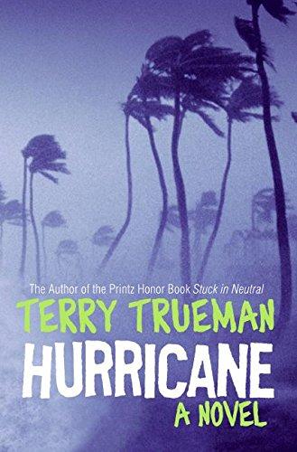 9780060000189: Hurricane: A Novel
