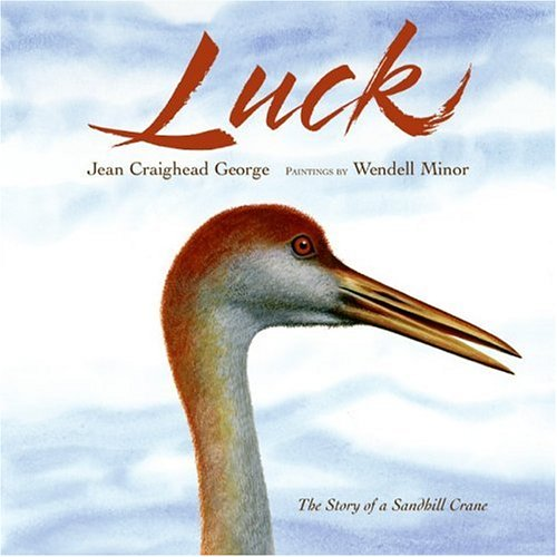 Luck: George, Jean Craighead; Minor, Wendell