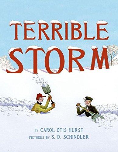 9780060090012: Terrible Storm