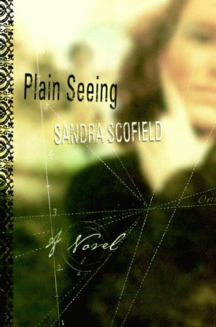 9780060173425: Plain Seeing: A Novel