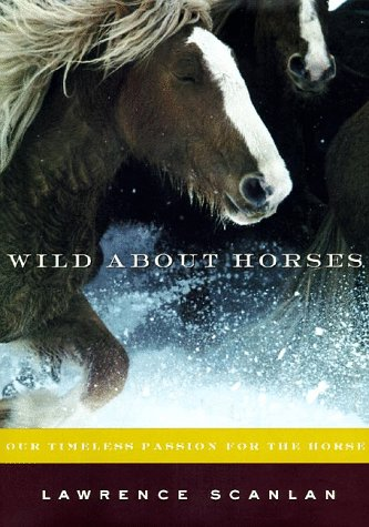 9780060191467: Wild About Horses: Our Timeless Passion for the Horse