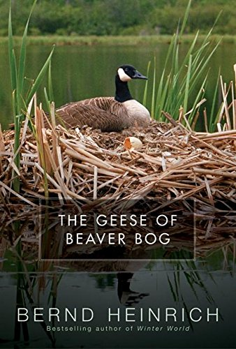 9780060197452: The Geese of Beaver Bog