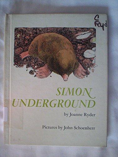 9780060251574: Simon Underground