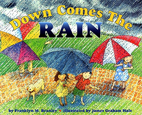 9780060253387: Down Comes the Rain (Let's-Read-and-Find-Out Science, Stage 2)