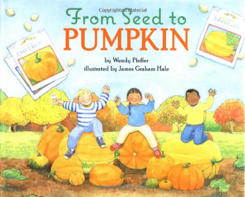 9780060280383: From Seed to Pumpkin (Let's-Read-And-Find-Out Science)