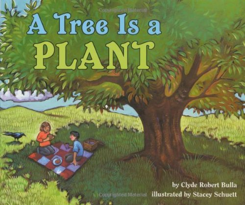 9780060281724: A Tree Is a Plant (Let's-Read-and-Find-Out Science)